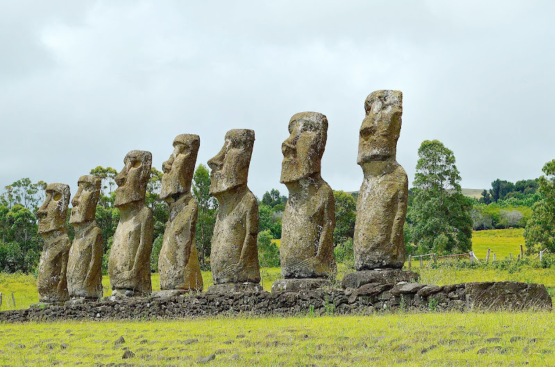 On average, the moai on Easter Island stand 13 feet high and weigh 14 tons.