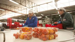 Las nuevas instalaciones de Coprohnijar refuerzan su apuesta por la agricultura ecológica.