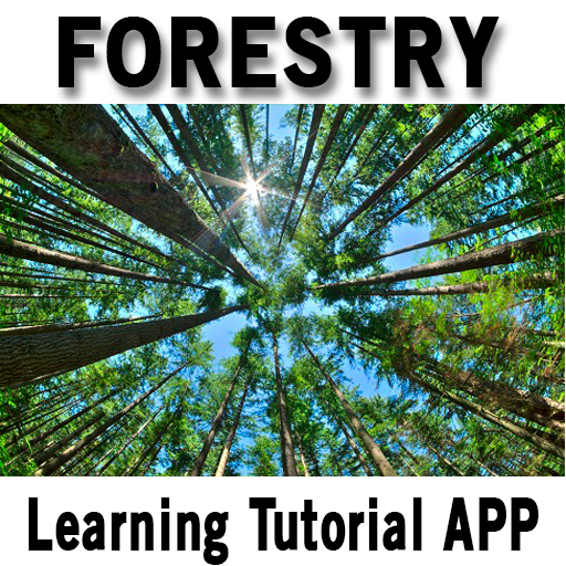 Forestry – Apps on Google Play