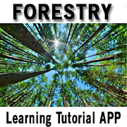 Forestry App Report on Mobile Action - App Store