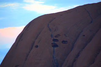 Photo: Year 2 Day 218 - Erosion Line and Holes
