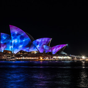 by Carley Reed - Buildings & Architecture Public & Historical ( water, lights, reflection, australia, vivid, night, opera house, sydney )