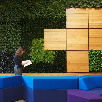 Junge Frau in einem offenen Bereich eines Google-Büros, die vor einer begrünten Wand steht und in das Notizbuch vertieft ist, das sie in den Händen hält