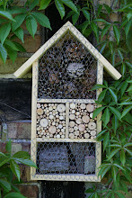 Photo: Auch Insekten haben Ihr eigenes Landhaus Windrose