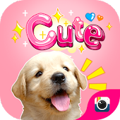 (FREE) Z CAMERA CUTE STICKER