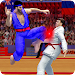 Tag Team Karate Fighting Tiger: World Kung Fu King icon