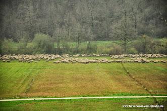 Photo: und im Tal