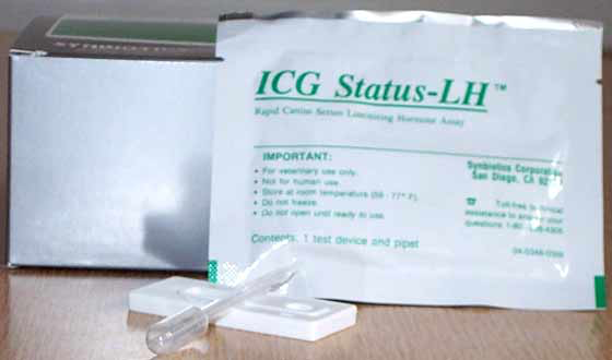 Components of the Status-LH test kit for measurement of luteinizing hormone in canine serum (Synbiotics, San Diego CA). The foil packet containing the test device and pipette must not be opened until just before running the test.