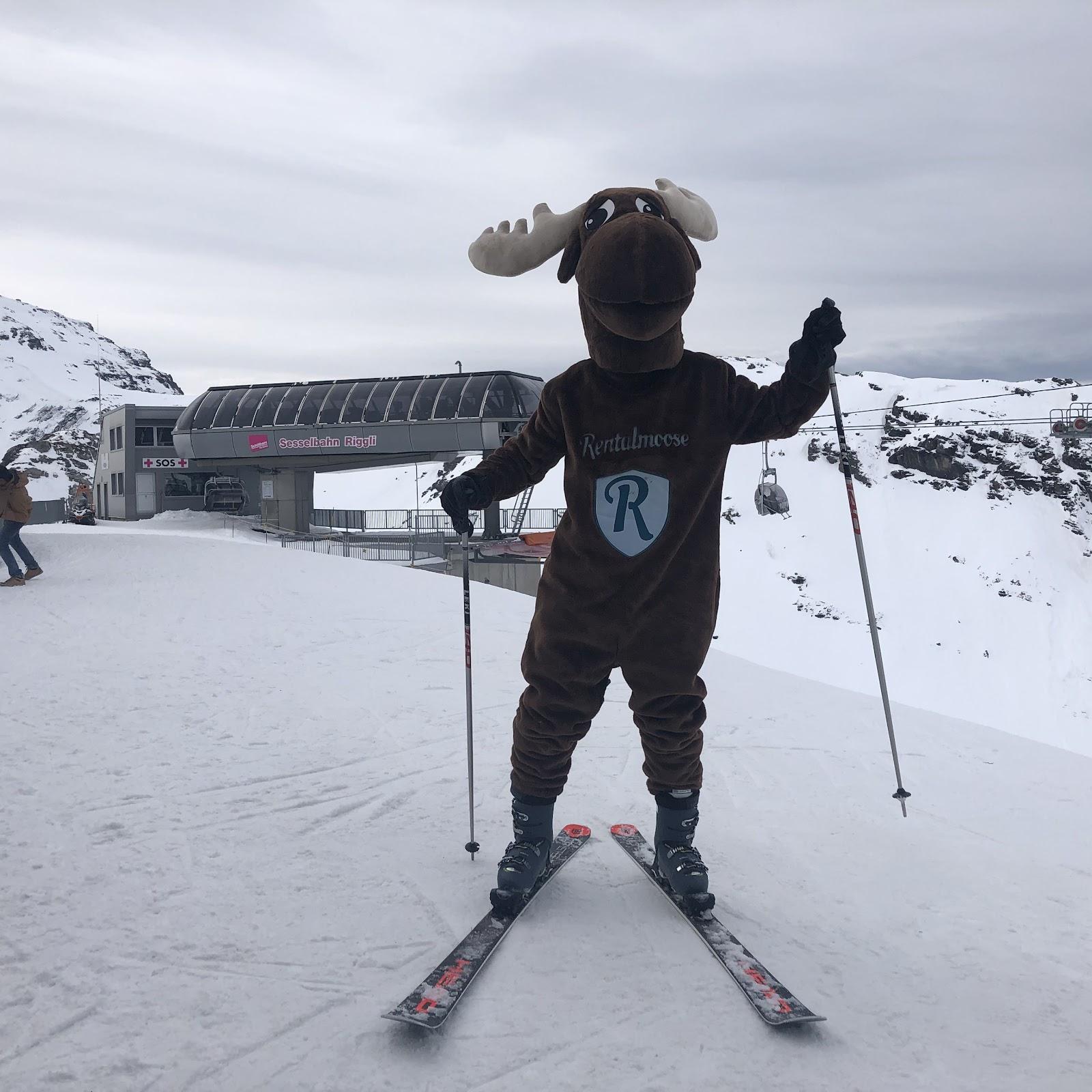 Rental Moose mascot posing on ski slope in Switzerland. Rental Moose is a global car rental broker.