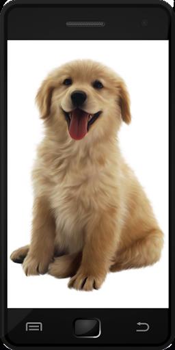 玩教育App|小狗免費|APP試玩