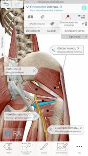 Atlas de anatomía humana 2021 2