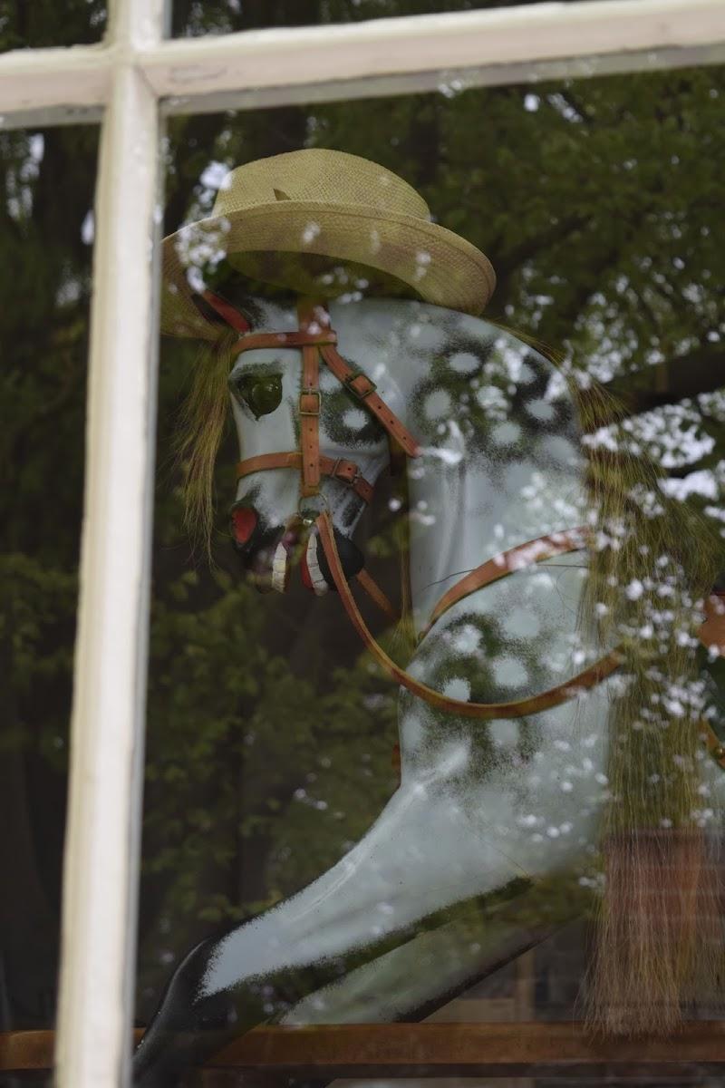 dietro a una finestra di mariaelenacapaccioli