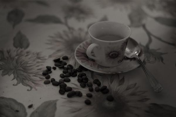 caffe di Foxma
