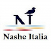 Nashe Business