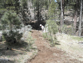 Photo: Fay-Luther/Jobs Peak Ranch Trail Construction