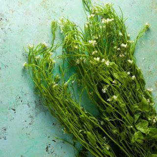 Wild Garlic Mustard Green Chimichurri