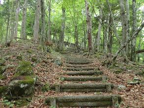 林道手前から階段道