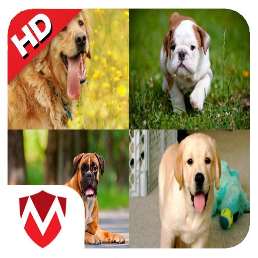 娱乐の犬の音 LOGO-記事Game