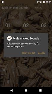 Mole cricket Sounds - náhled