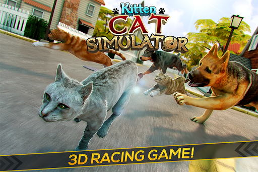 Kitten Cat Simulator Games 3D