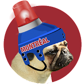 Montréal Hockey Photo Editor