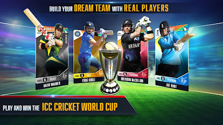 ICC Pro Cricket 2015 1.0.23 screenshot 148211