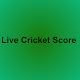 Pakistan vs HongKong Live Score Download on Windows