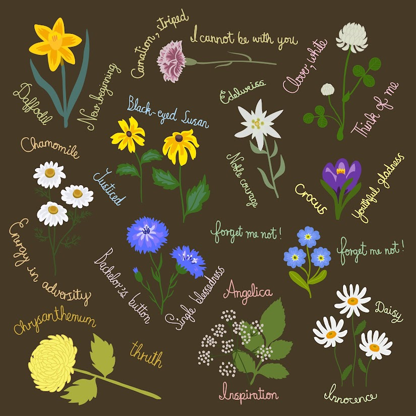 Las flores y su significado