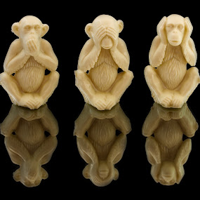 Speak See Hear by Sam Sampson - Artistic Objects Still Life ( hear, reflection, see, still life, speak, three, wise monkeys )