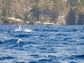 Photo: Quantum otS - Ponta Delgada - Whale Watching