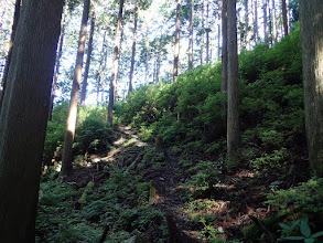 斜面の登りが続く