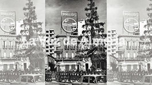 Cuando el árbol era de verdad
