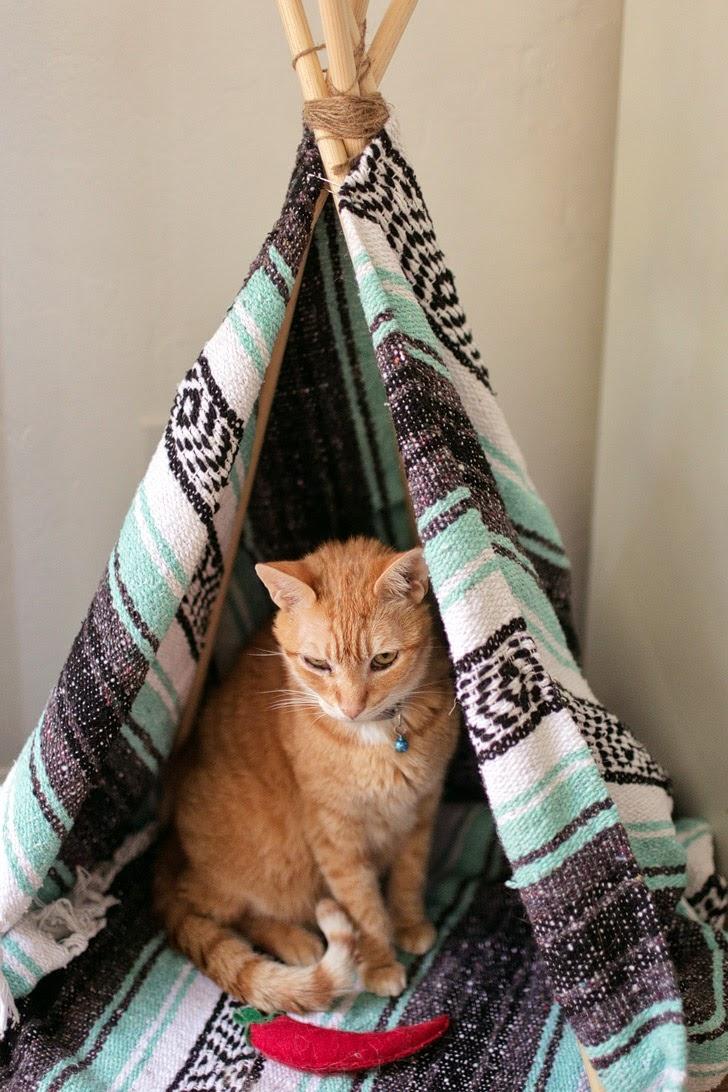 DIY Cat Teepee.