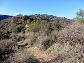 Photo: View north from the lower end of Upper Colby Trail toward Summit 2583