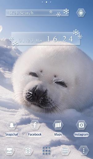 Cute Wallpaper Baby Seal Theme 1.0.0 Windows u7528 5