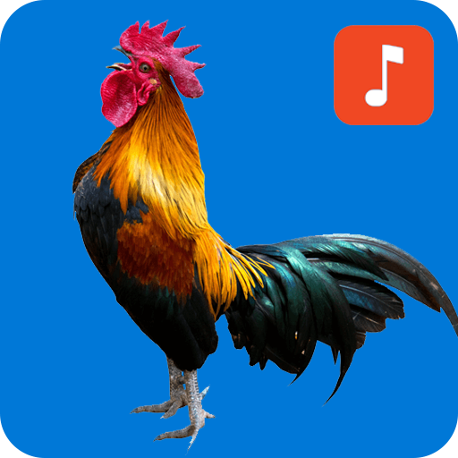 ringtone rooster crowing
