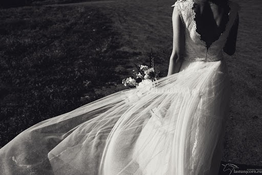 Wedding photographer Anastasiya Lasti (Lasty). Photo of 27.05.2015