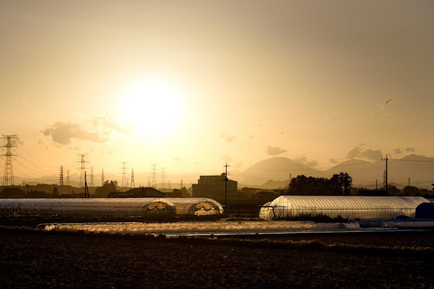【旅13日目】雨にも負けず風にも負けず、栃木県は宇都宮へ