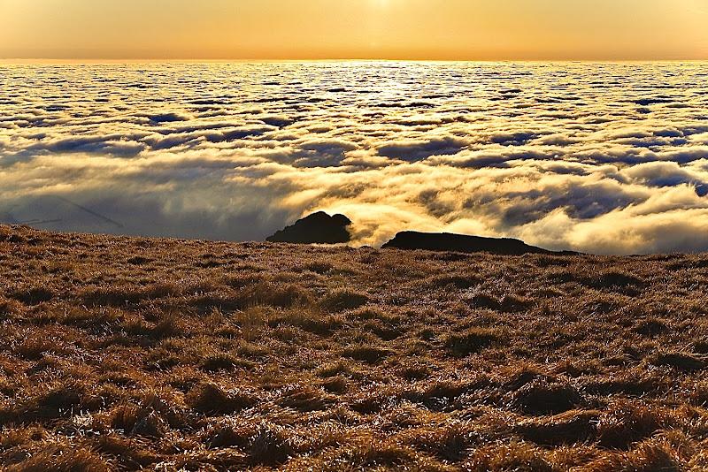 Prato di nuvole di Roberto paleari