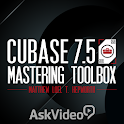 Mastering Toolbox For Cubase icon