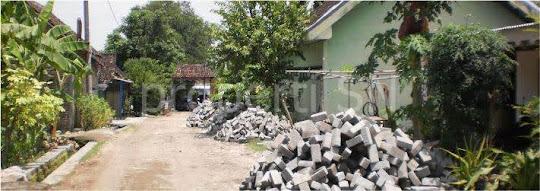 Kondisi umum Desa Bangunrejo lor Pitu