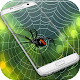 Spider Web Out Download on Windows