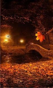 Autumn Twinkle Lights - náhled