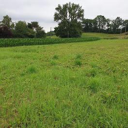 terrain à Montaut (64)