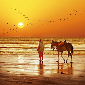 Clifton Beach, Karachi by Sami Ur Rahman - Landscapes Beaches ( golden waves, sunset, horse joyrides, reflections, birds formation )