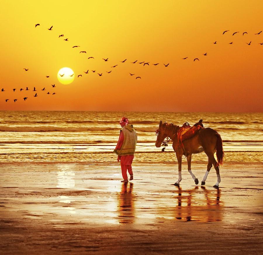 Clifton Beach, Karachi by Sami Ur Rahman - Landscapes Beaches ( golden waves, sunset, horse joyrides, reflections, birds formation )