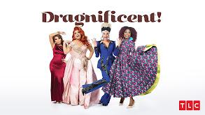Dragnificent! thumbnail