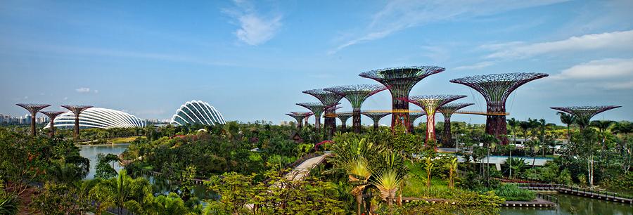 Gardens By The Bay, Singapore by Joseph Goh Meng Huat - City,  Street & Park  Vistas