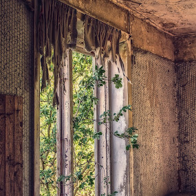Nature takes over by Buffan Walter - Buildings & Architecture Decaying & Abandoned ( curtains, rurex, window, nature takes over, forgotten, rural, naturetakesover, decay, abandoned,  )