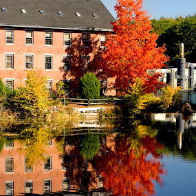 New England Foilage by Anastasiya Manuilov - Landscapes Waterscapes ( fall, new england, foilage, water )